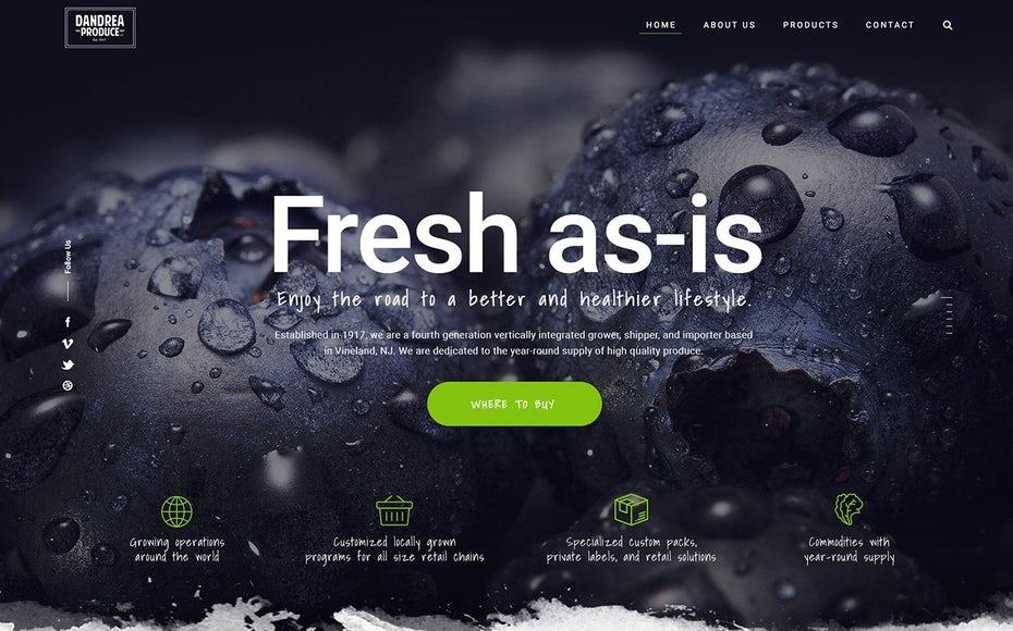 نکات طراحی سایت حرفه ای